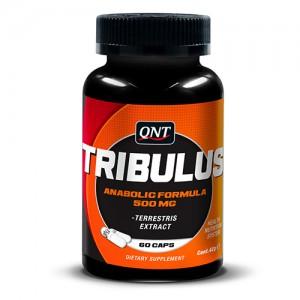 Tribulus (60kap)