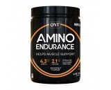 Amino Endurance (350gr)